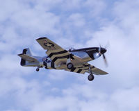 Мустанг P-51 приходя внутри для посадки Стоковые Изображения RF