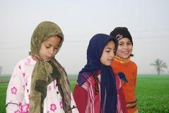 Мусульманские девушки играя на ферме в Египте Стоковая Фотография