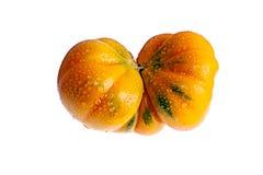Мутант томата Стоковая Фотография