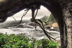 Мутьевые океаны стоковые изображения rf