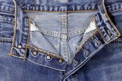 Муха голубых джинсов Стоковое Фото