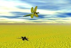 муха дракона Стоковое Изображение
