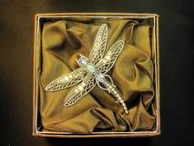 муха дракона brooch Стоковые Фотографии RF