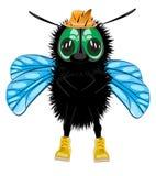 Муха насекомого шаржа в шляпе и ботинке на белой предпосылке Стоковое фото RF