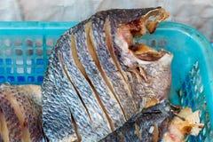 Муха на посоленных рыбах Закрытый вверх Стоковая Фотография
