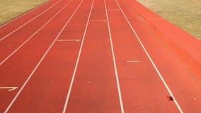 Муха трутня над следом красного стадиона идущим
