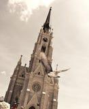 муха церков к Стоковое Изображение