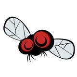 муха черепашки eyed шаржем Стоковое Изображение RF