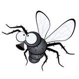 муха шаржа Стоковые Изображения