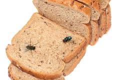 Мухы сидя на отрезанном хлебе стоковое фото