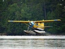 Мух-в самолете поплавка Стоковые Фото