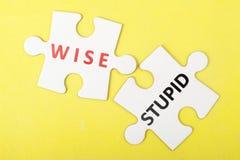 Мудрый против глупой концепции Стоковое Фото