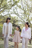 Мульти-поколенческая семья, бабушка, мать, и дочь держа руки и идя для прогулки в парке в весеннем времени Стоковые Фотографии RF