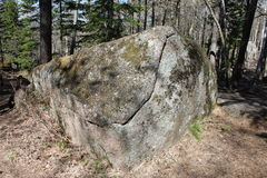 Мх-выросли красивое, который каменный с отказом с тенью деревьев лежа в coniferous лесе в территории стоковая фотография