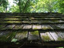 Мшистая деревянная крыша Стоковое фото RF
