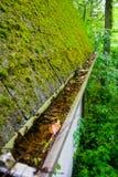 Мшистая крыша и заполненная сточная канава Стоковые Изображения