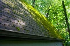 мшистая крыша Стоковое Фото