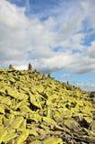 Мшистая морена в прикарпатских горах. стоковые фото
