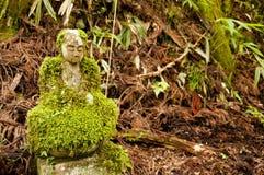 Мшистая статуя бодхисаттвы Стоковое Изображение RF