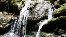 мшисто над водопадом утесов сток-видео