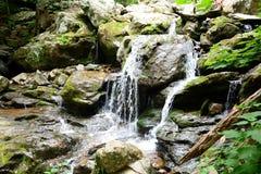 мшисто над водопадом утесов Стоковая Фотография