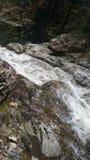 Мшистые водопады на утесах Стоковые Фото