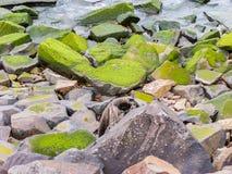 Мшистые утесы на пляже Стоковая Фотография