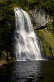 мшистый водопад утесов Стоковое фото RF