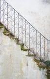мшистый stairway Стоковое фото RF