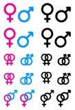 Мыжские и женские символы Стоковое Фото
