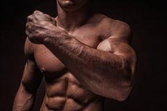Мыжские рукоятки стоковое изображение
