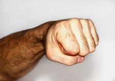 Мыжской кулачок Стоковое Изображение