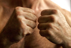 Мыжской кулачок Стоковые Фотографии RF