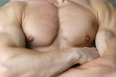 мыжской мышечный торс Стоковые Фото