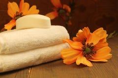 Мыло и полотенца Стоковое Изображение RF