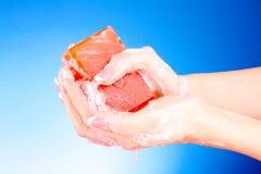 мыло рук Стоковое Изображение RF
