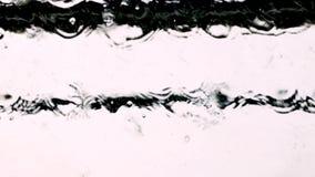 мытье губки машины шланга автомобиля чистое сток-видео