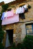 мытье дня Стоковое Фото
