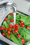 мытье овощей Стоковое Изображение