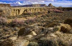 мытье реки каньона Стоковая Фотография RF