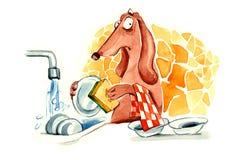 мытье собаки тарелки Стоковые Фотографии RF