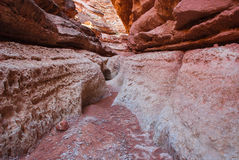 Мытье собора нижней части, водя к Колорадо, Аризона стоковое изображение rf