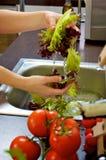 мыть овощей Стоковое Фото