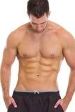 Мышечная ванта показывая подбрюшные мышцы стоковая фотография rf