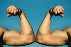 Мышечная рука против сильной руки Конкуренция, сравнение прочности Против Бой крепко : Рука, рука человека, fis стоковые фотографии rf