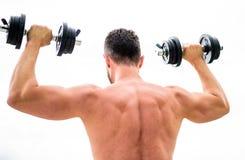 Мышечный человек работая с видом сзади гантели Действия говорят более громко чем тренеры Спортсмен с сильными задней частью и ору стоковое фото
