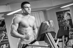 Мышечный человек в спортзале Стоковое Фото