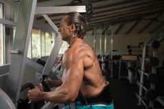Мышечный человек делая тяжеловесную тренировку для задней части Стоковая Фотография RF