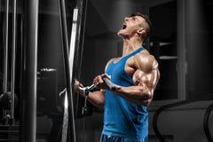 Мышечный человек разрабатывая в спортзале делая тренировки на бицепсах, сильном мужчине стоковые фото