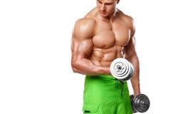Мышечный человек разрабатывая делать работает с гантелями на бицепсах, сильном мужском нагом abs торса, изолированном над белой п Стоковые Фото